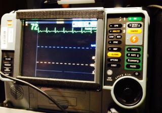 LP 15 Monitor