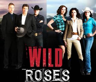 Wild Roses - 2008-9